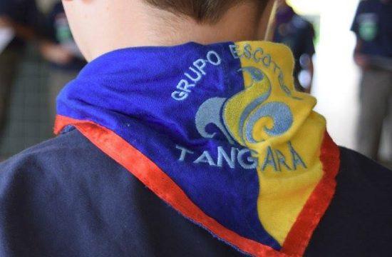 Grupo Escoteiro Tangara