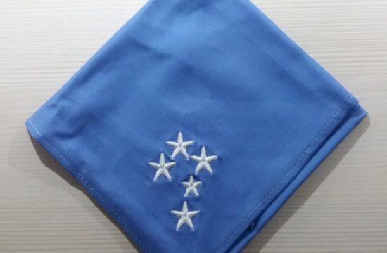 Escoteiros do Brasil - Azul 1