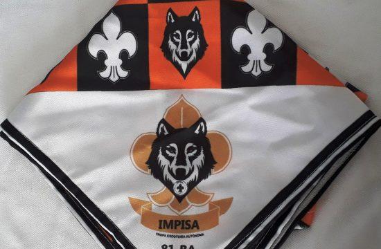 Impisa 1